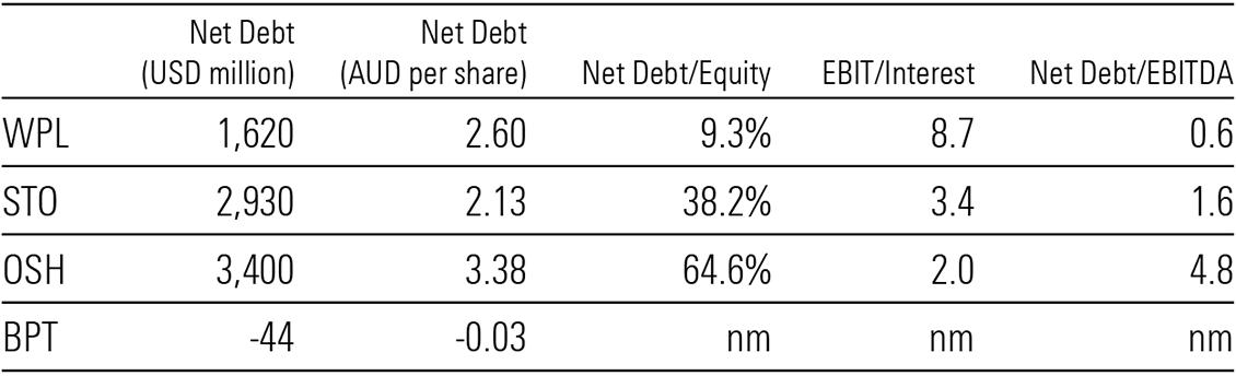 Net debt analysis