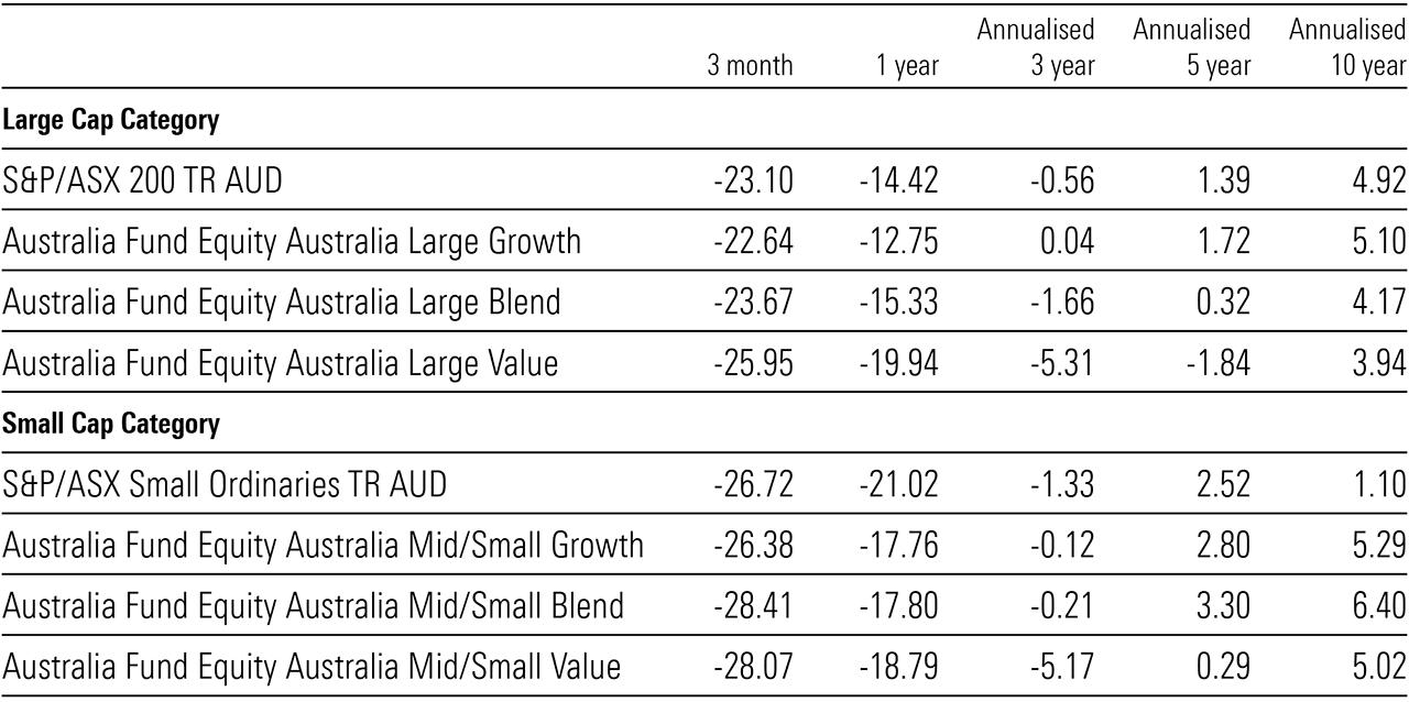 large cap performance