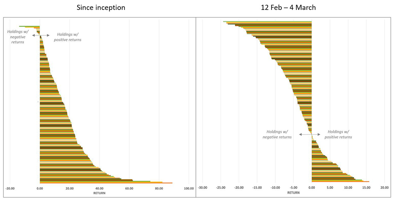 Holding returns since inception and during 12 Feb - 4 March decline