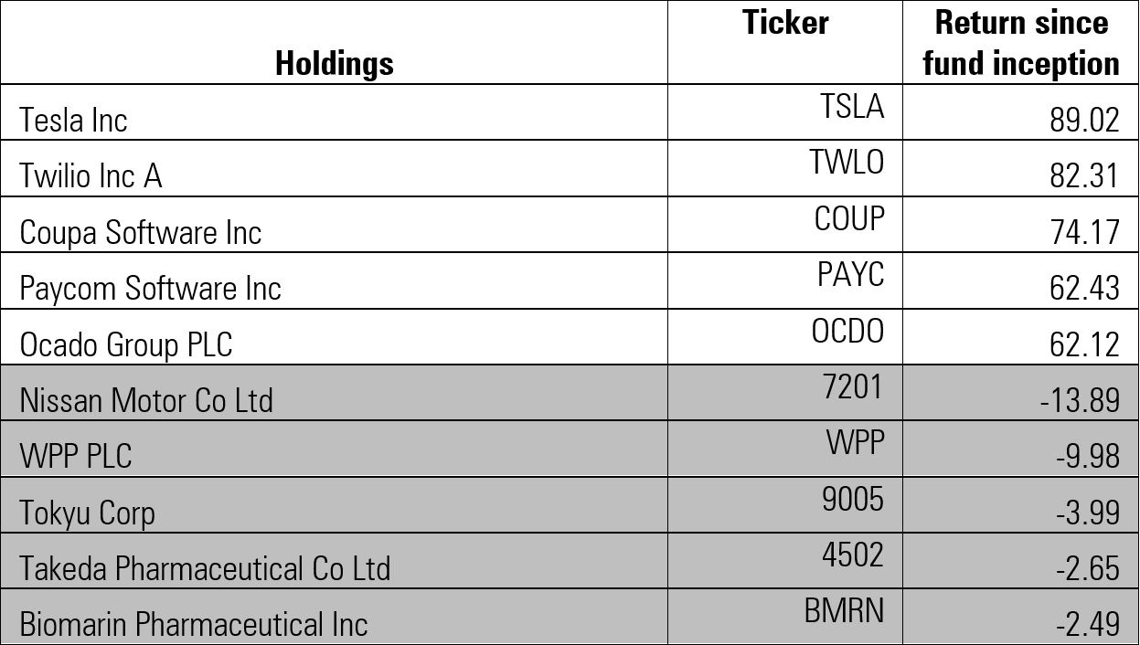 Top and bottom 5 holdings
