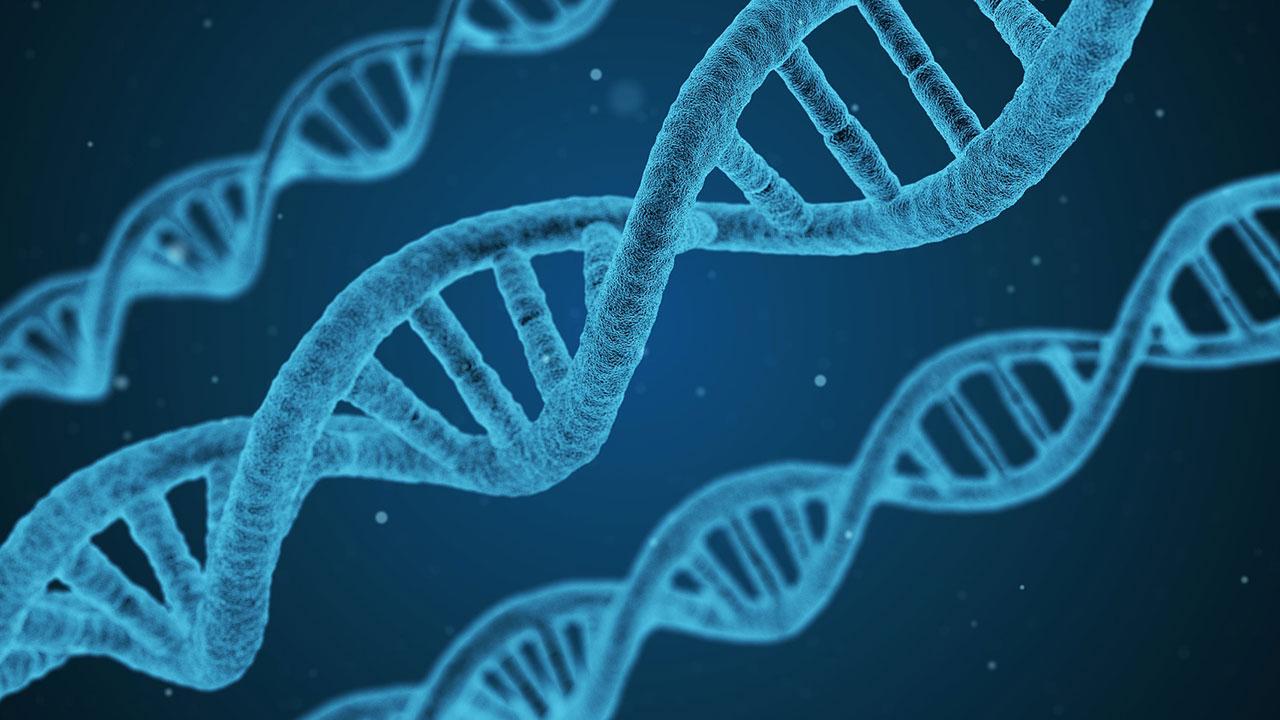 Biotech beyond covid