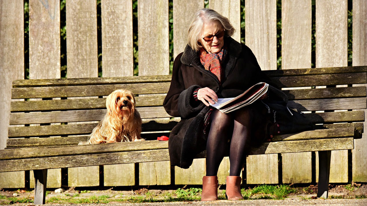 woman reading newspaper on bench accompanied by a dog