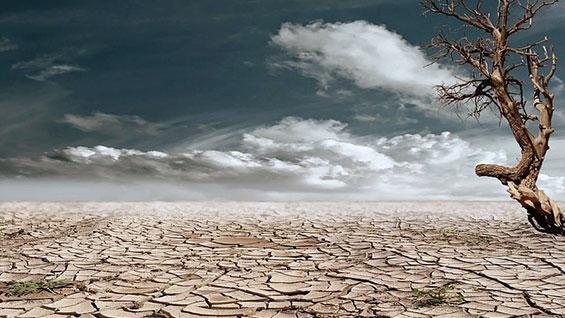 Image of drought-stricken landscape