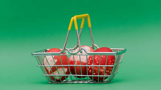 Eggs basket diversification