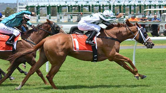 Horse Racing Tab Full Year Results