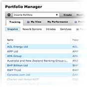 portfolio manager image